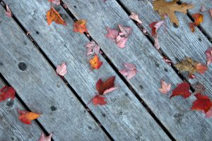 wooden boards, gray wood, vintage, old style, leaves, texture
