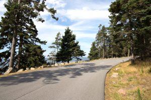 strada di campagna, paesaggio, natura, alberi, cielo, nuvole