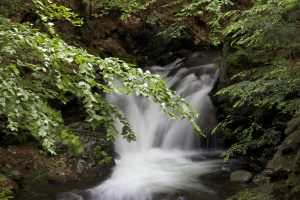 cascata, ruscello, fiume, foglie verdi, grandi rocce, acqua, ruscello, foglie, alberi