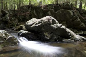 fast creek water, forest, rocks, water, rocks, trees