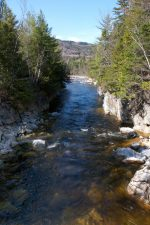 fast river, river, water, rocks, trees