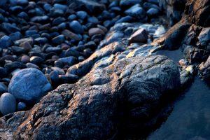 rocciosi costa, costa, tessitura, la natura, le rocce