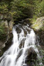 waterfall, stones, water, leaves, trees, rocks