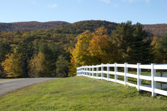 white wooden fence, road, green grass