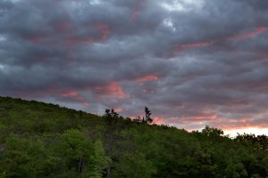 orange sky, dark clouds, forest, nature, trees, clouds, sunset, storm, summer
