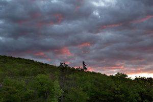 orange himmel, mørke skyer, skov, natur, træer, skyer, sunset, storm, sommer