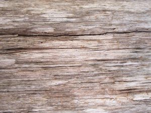 light brown wood, old, pattern, wood, texture