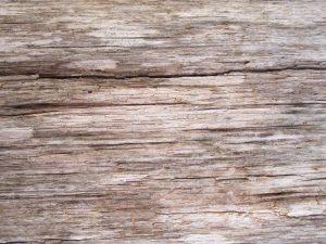 bois brun clair, vieux, modèle, bois, texture