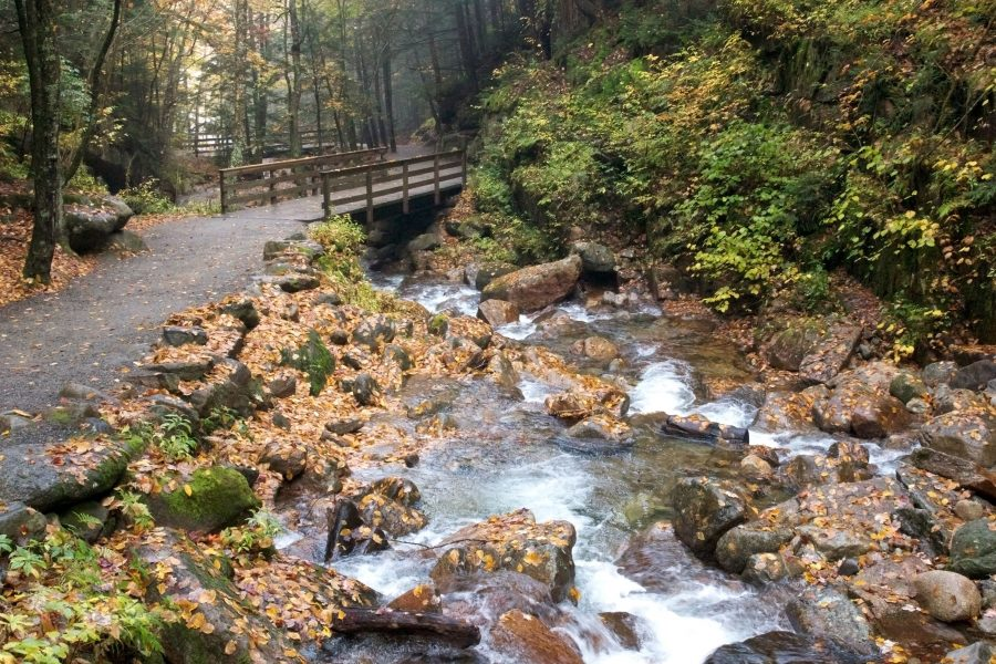foråret vand, creek, trail, strøm, vand, sten, blade, løv, efterår