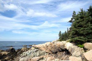 rocky beach, coastline, coast, beach, forest