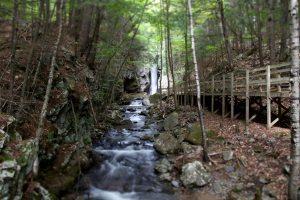 creek, national park, wooden bridge