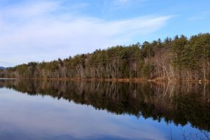 water reflection, lake, water, trees, clouds
