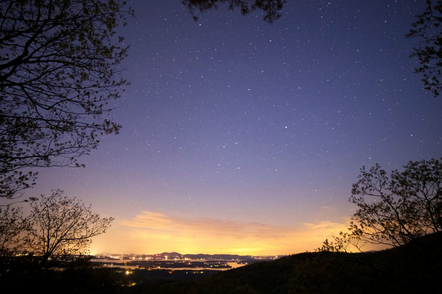 purple sky, night sky, stars, night, summer, trees, clouds