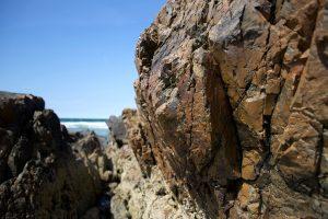 rock texture, big rocks, geology, ocean, rocks