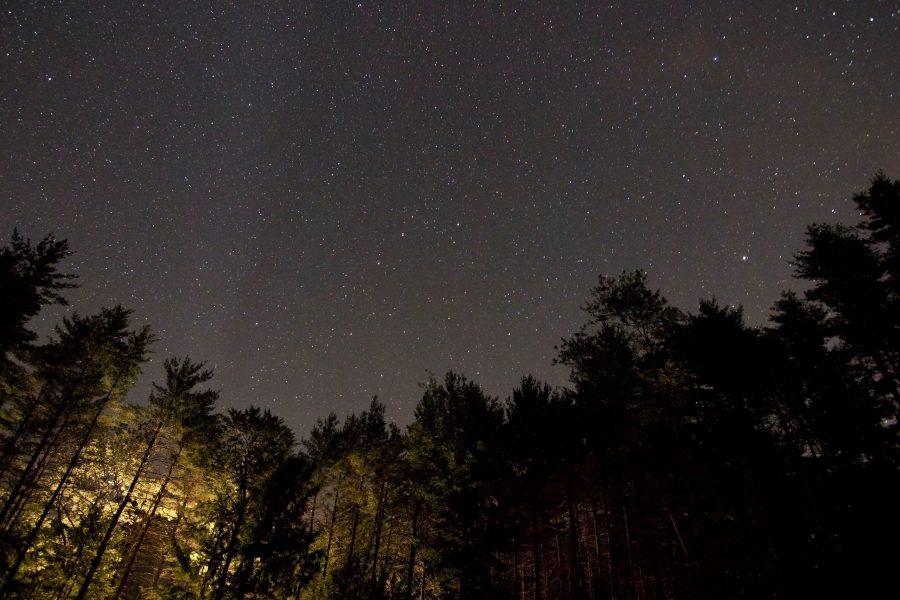Ponoćni krajolik, noć slikovit, zvijezda, noći, drveće