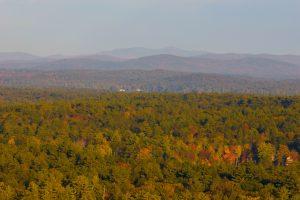 деревами гори краєвид, листя, осінь