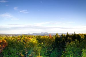 colorful leaves, trees, overlooking, trees, foliage, mountains