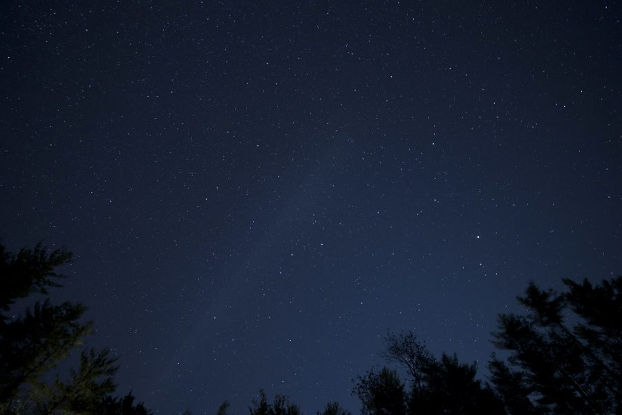 pucati zvijezde, noćno nebo, zvijezde, drveće, noć