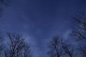 midnatt stjerner, himmel, natt, skyer, stjerner, trær
