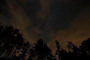 natt landskap, stjerner, natt, trær, skyer