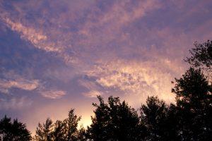 purpurové nebe, mraky, krajiny, mraky, západ slunce, stromy