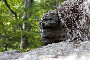 grote rock, bitmappatroon, patroon, wazig rotsen, rotsen, bomen