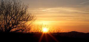 orange, sunset, trees, sky, mountains