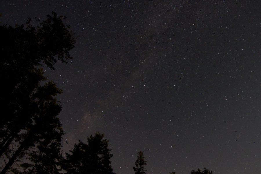 lesné oblohe, noc hviezdy, hviezdy, noc, stromy, oblohu, Mliečna dráha