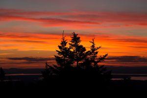 Orange sky, oranžová mraky, noc, súmraku, krajiny, sunset, obloha, mraky, stromy