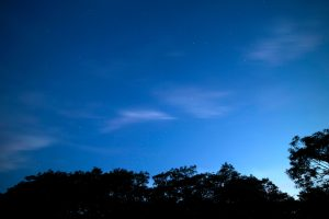 dark blue sky, clear sky, dusk, stars, clouds, trees, night