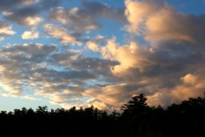 dark clouds, sunset clouds, sunset, clouds, trees