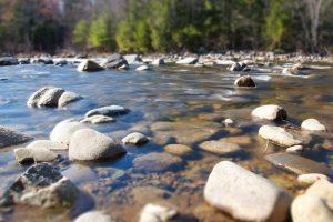river rocks, shore, river coast, river, rocks, trees, summer