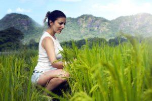 pretty girl, plants, rural, woman, grain, green grass, farm