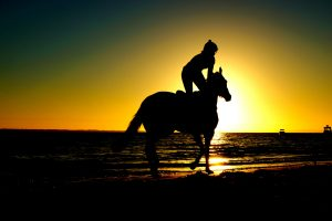 person, riding horse, sunset