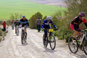 mountain biking, trail, road, race