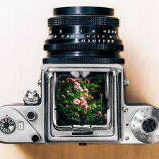 digitální fotoaparát, fotografování, LCD displej