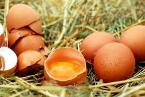 chicken eggs, cracked egg