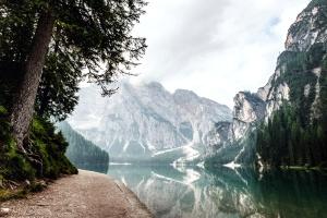 rivière, rocheux, montagne, vert sapin, arbre