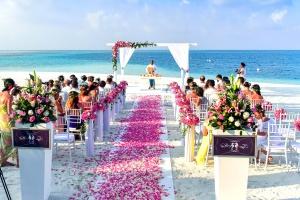 海辺、結婚式、バラ、通路