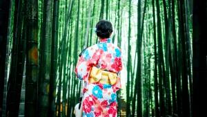 phụ nữ, mặc kimono, Nhật bản