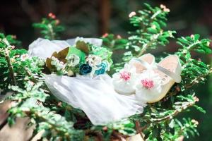 velo, boda, hojas, amor, planta
