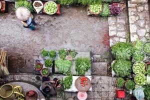 street, vegetables, street market, people