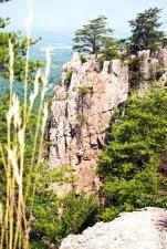 Steine, Reise, Bäume, Wälder, Kiefer