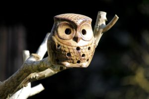 wooden owl, toy