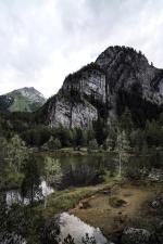 rocosa montaña, árboles, valle, agua, río