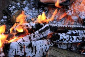 tre, flammer, brann