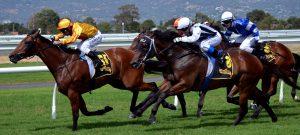 les courses de chevaux, les participants, course