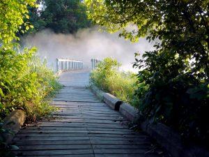nevoeiro, ponte de madeira, passarela