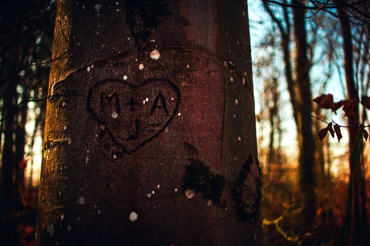 καφέ ξύλο κορμού, καρδιά, αρχικά