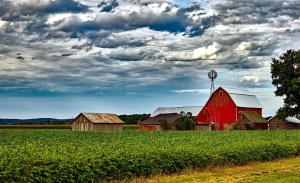 houses, cloudy, sky, windmill, agriculture